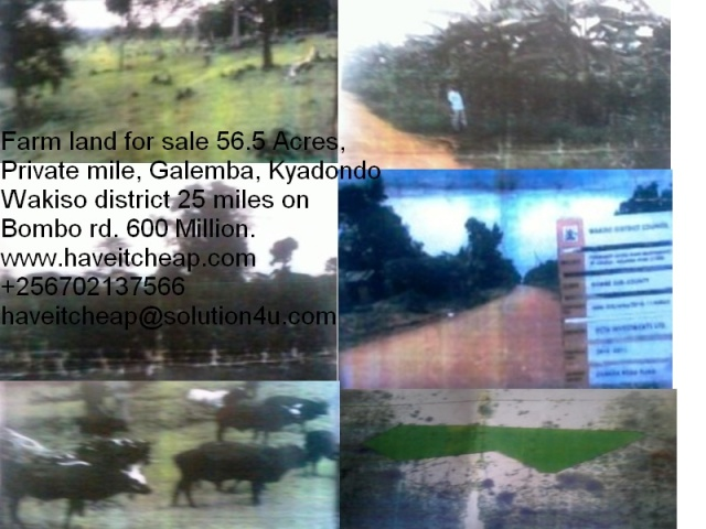 Darm Land of Galemba on sale