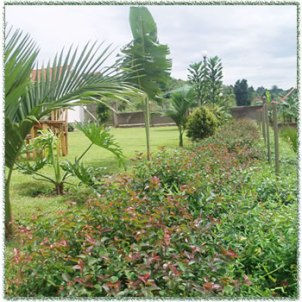 Lubowa Gardens on sell by HICGI02